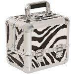 salon services carina beauty box small zebra