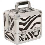 salon services carina beauty box small zebra